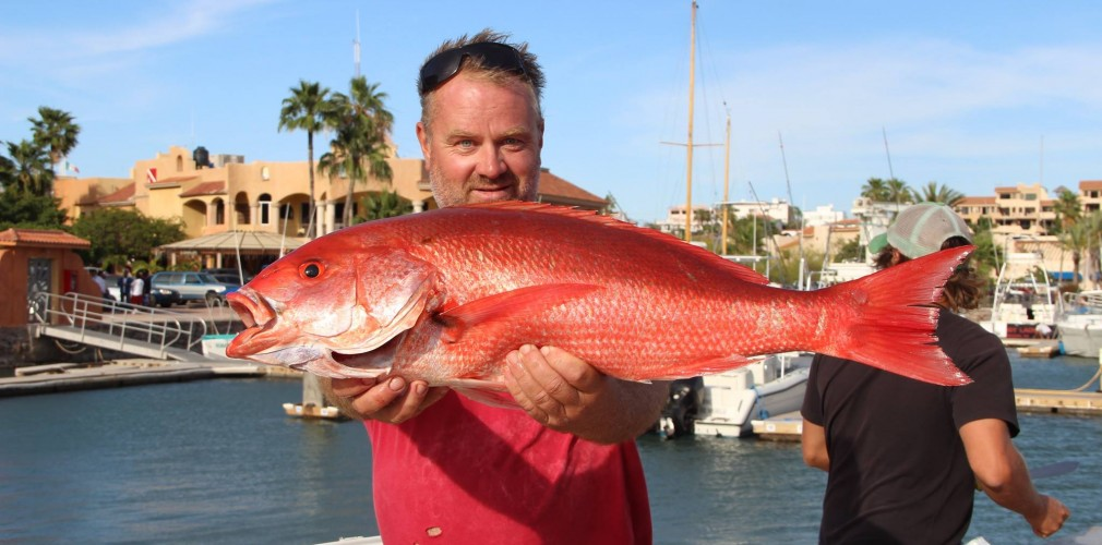 San carlos sport fishing cruise tours come explore the for San carlos mexico fishing